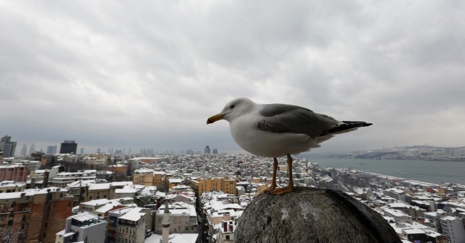 19.fev.2015 - Tempestade de neve fechou o aeroporto de Istambul, capital da Turquia, impediu o tráfego de automóveis na cidade de 15 milhões de habitante e forçou o fechamento do canal de navegação do distrito de Bósforo, ao fundo