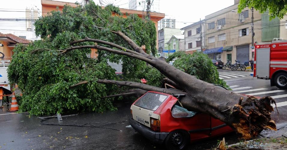 24.fev.2015 - Uma árvore de grande porte caiu atingindo um veículo que estava estacionado na rua do Manifesto, bairro do Ipiranga, zona sul da capital paulista, nesta terça-feira (24), durante forte chuva que atingiu a região