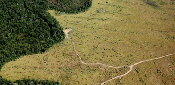Vista aérea de área de preservação permanente com enorme parte desmatada em Nova Ubiratã, região médio-norte de Mato Grosso
