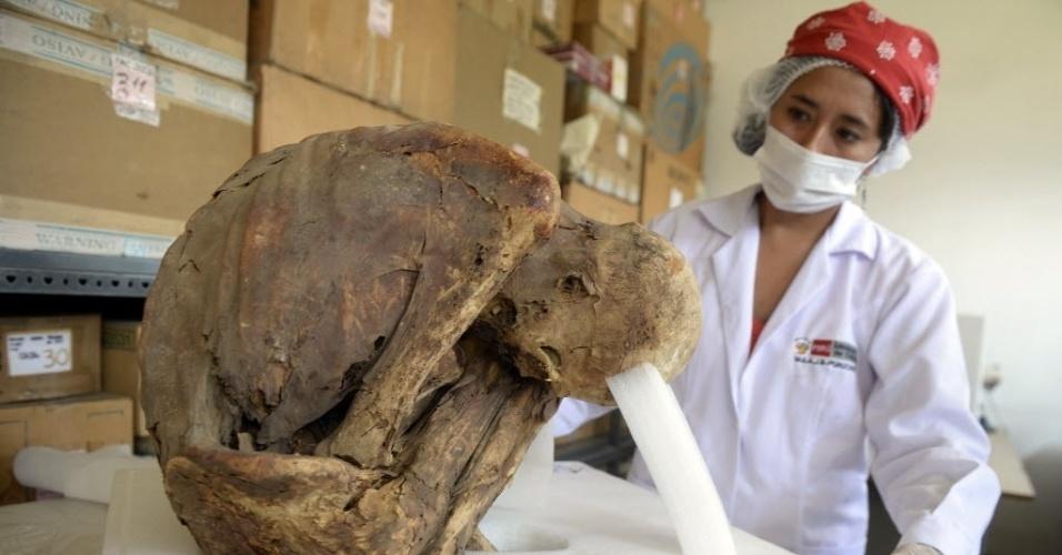 12.mar.2015 - Pesquisadora examina múmia descoberta em urna funerária no sítio arqueológico de Puruchuco, em Lima, no Peru. A capital do Peru, possui 9 milhões de habitantes