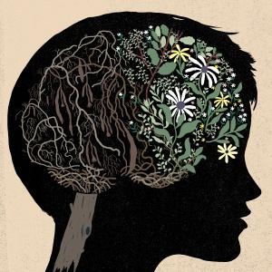 Elementos de julgamento social e memória de curto prazo, partes importantes do complexo cognitivo, podem ter seu auge mais tarde do que foi pensado anteriormente