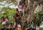 O indígena no Brasil: Uma luta histórica para existir - Fábio Nascimento/Greenpeace