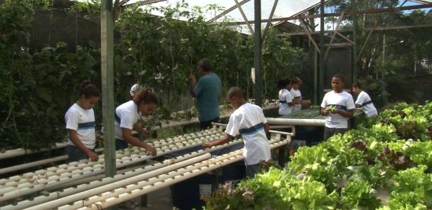 Estudantes do Ciep Pontes de Miranda trabalham em horta da escola