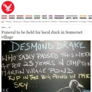 Placa em bar faz homenagem ao pato Desmond Drake, que morreu na boca de uma raposa, em um vilarejo de Somerset