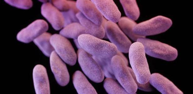 """""""Se não fizermos nada sobre como os antibióticos, já existentes e novos, são usados, controlados e acessíveis para as pessoas que necessitam, qualquer antibiótico novo vai encontrar resistência rapidamente"""""""