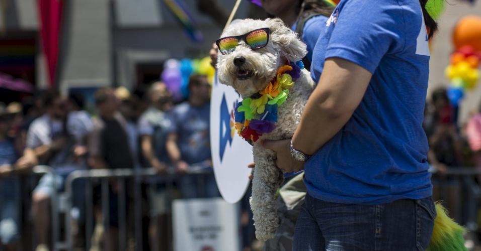 14.jun.2015 - Homem segura seu cachorro, enfeitado com as cores da banda LGBT durante desfile de carros alegóricos e blocos da 45ª Los Angeles Pride em West Hollywood, Califórnia (EUA)