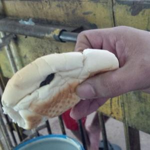 Detento da Casa de Custódia de Maceió, em Alagoas, mostra pão com fezes de rato que recebeu durante refeição