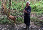 A comovente história do idoso que se negou a abandonar cães para fugir de furacão (Foto: Rescate Animal/Facebook)