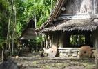 Em 2007, zika despontou com força em uma ilha remota do Pacífico (Foto: iStock)