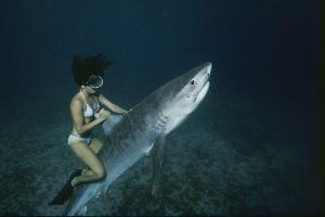 Nick Caloyianis/National Geographic Creative