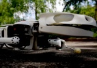 Cientistas criam robô salamandra que anda e nada como o anfíbio (Foto: BBC)