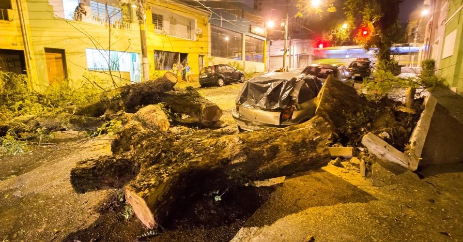 28.set.2015 - Carros ficam danificados após serem atingidos por uma grande árvore nesta madrugada na rua Vespasiano, na Vila Romana, zona oeste de São Paulo