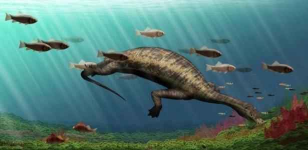Estudo de fósseis pode ajudar a compreender período de extinção em massa na Terra
