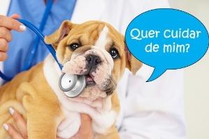 Franquia de clínica veterinária custa R$ 134 mil e nem precisa ser médico (Foto: Imagem: Getty Images/PeopleImages)