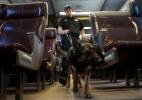 Treino de cães policiais inclui salto em altura e preparação para estresse (Foto: Mike Segar/Reuters)