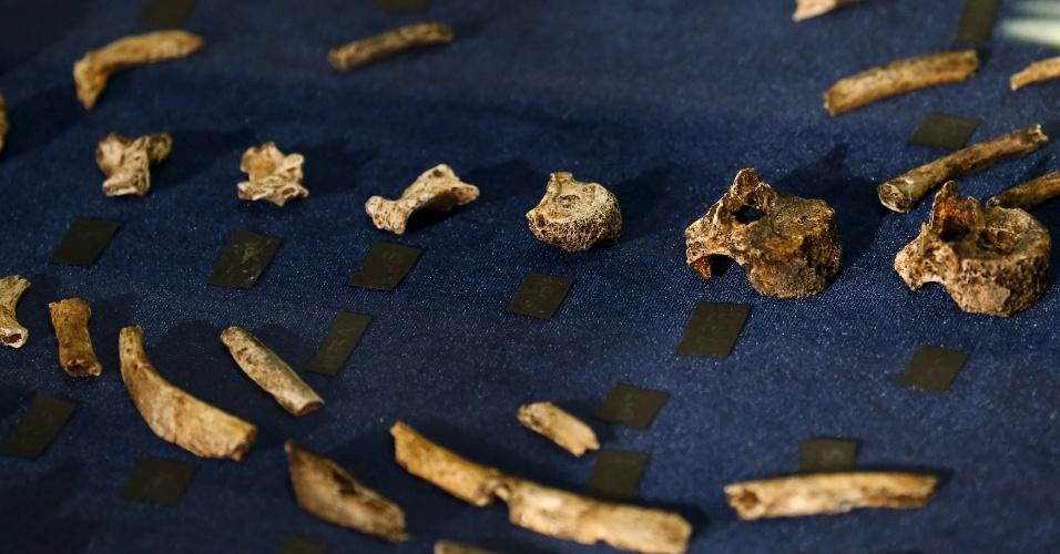 10.set.2015 - Os fósseis que fazem parte do esqueleto do 'Homo Naledi' foram encontrados em uma caverna profunda de difícil acesso, perto de Johannesburgo (África do Sul), na área arqueológica conhecida como