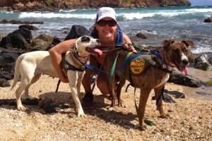 Indo pro Havaí? ONG deixa turistas adotarem cachorro por um dia (Foto: Reprodução/Kauai Humane Society)