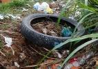 Prefeitura de SP vai cobrar em dobro por limpeza de terreno com Aedes - Joel Silva/Folhapress