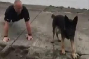 'Flexão de pata': cão acompanha policial em desafio beneficente (Foto: Reprodução/ BBC)