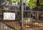 Estudantes ocupam novamente colégio Fernão Dias, em SP - Gustavo Basso/UOL