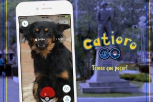 Na onda do 'Pokémon Go', prefeitura lança campanha de adoção de cães no RS (Foto: Divulgação)