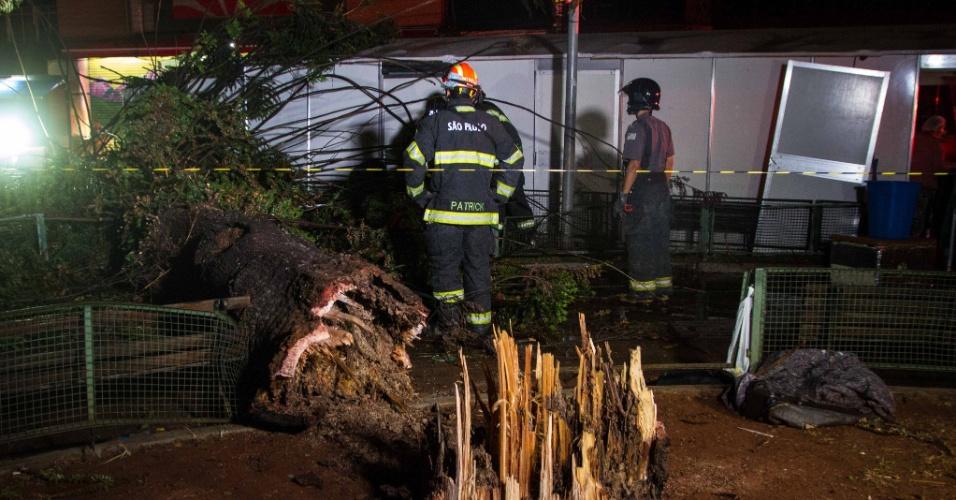 16.mai.2016 - Estragos causados pela queda de árvore no Largo da Concórdia, no centro de São Paulo, nesta segunda-feira de chuva na capital paulista. Segundo o Corpo de Bombeiros, uma pessoa morreu com a queda da árvore no local, por volta das 17h30. Uma menina de 2 anos, que também foi atingida pela árvore, sobreviveu após uma intervenção da equipe médica de mais de uma hora