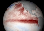 NOAA/globalcoralbleaching.org