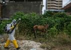 Temer contraria técnicos e permite avião jogar inseticida contra Aedes - Mauricio Lima/The New York Times