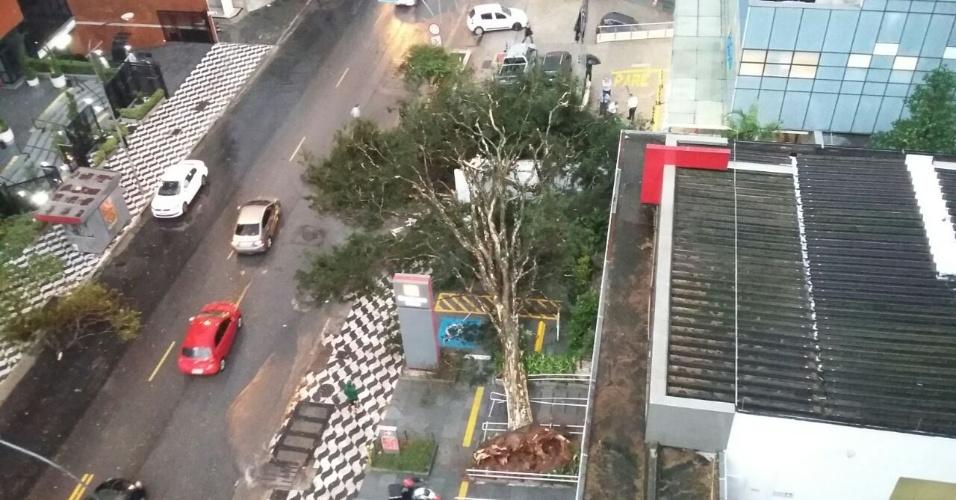 16.mai.2016 - Árvore cai em frente ao Hospital Infantil Sabará, na avenida Angélica, no centro da capital paulista. Segundo o Corpo de Bombeiros, cerca de 100 árvores caíram em São Paulo nesta segunda-feira. A passagem de uma frente fria pelo Estado provocou a pancada de chuva na região metropolitana da capital paulista, com ocorrência de granizo