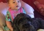 Cão herói morre após ajudar a salvar bebê em incêndio nos EUA (Foto: Reprodução/WBAL-TV e Facebook/Baltimore Fire Department)