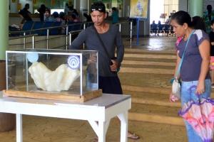Divulgação/Escritório de Turismo de Puerto Princesa