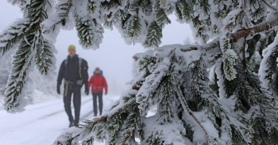 14.out.2015 - Montanhistas caminham pela montanha de Brocken, na região central da Alemanha
