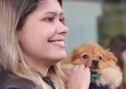 Empresa deixa funcionários levarem cachorros ao escritório, e foi uma festa (Foto: Marcela Sevilla/UOL)