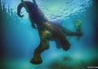 Fotógrafo faz incríveis imagens nadando com gazelas, elefantes e tubarões (Foto: Ali Bin Thalith)