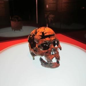 Fundação Museu do Homem Americano