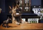 Londres terá o primeiro bar com cães garçons (e com cerveja grátis) (Foto: Reprodução/Kronenbourg1664)
