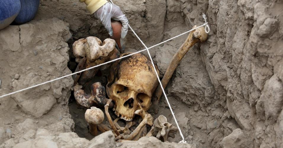 26.nov.2015 - Arqueólogo estuda ossada encontrada em local conhecido como Huaca Pucllana, em Miraflores, Lima (Peru), após descobrirem quatro tumbas pertencentes à cultura pré-hispânica ichma, civilização que existiu na costa central do Peru entre os anos de 1000 a 1450 d.C. Os corpos de três mulheres e um homem foram encontrados sentados dentro de tumbas individuais, em cima da Grande Pirâmide. Escavações anteriores já haviam confirmado de os ichmas era agricultores e tecelões e que viviam no pé do sítio arqueológico, onde secavam suas colheitas e ofereciam oferendas em forma de alimentos e algodão