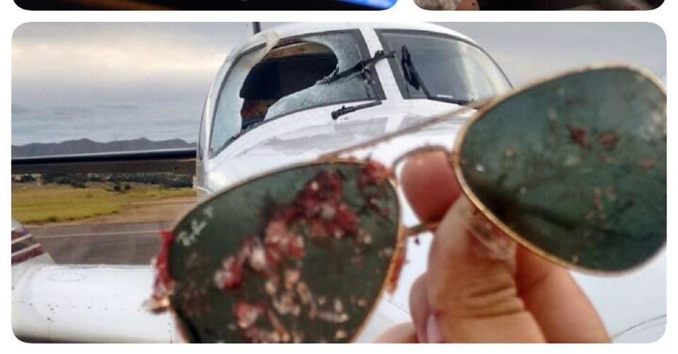 19.jul.2015 - Urubu bate e quebra para-brisa de avião em MG; copiloto Pedro Orsi Vieira teve ferimentos leves no rosto
