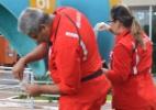 """Governo mobiliza servidores para """"faxinaço"""" anti-Aedes em prédios estatais - José Cruz/Agência Brasil"""