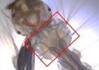 Biolarvicida obtido do bagaço da cana mata larvas de Aedes aegypti - Divulgação