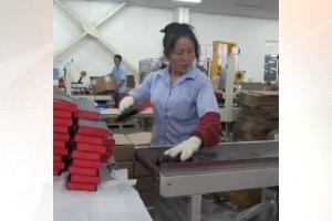 Fábrica produz uma bíblia por segundo na China (Foto: BBC/Reprodução)