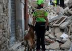 Festival de Veneza cancela festa de abertura por vítimas de terremoto - Filippo Monteforte/AFP