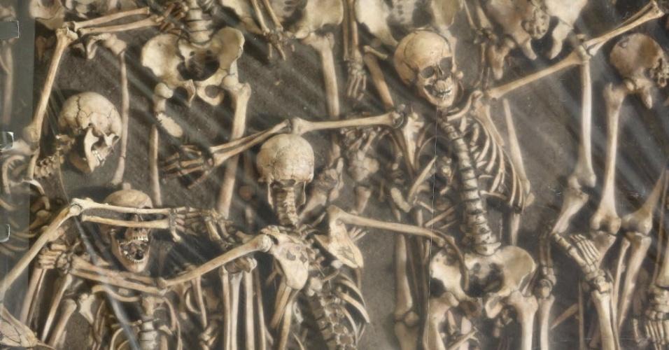 22.set.2015 - Esqueletos de soldados mortos na batalha de Lutzen (1632), são fotografados em uma vala comum no museu de Halle/ Saale, na Alemanha. Restos mortais de 47 soldados encontrados em uma vala comum serão exibido em uma exposição chamada