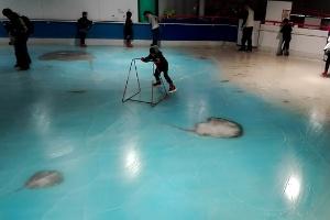 Após críticas, parque japonês fecha pista de patinação sobre 5.000 peixes congelados (Foto: AFP)