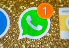 Golpe virtual finge ser WhatsApp para roubar dados de cartão de crédito (Foto: Fernanda Carvalho/Fotos Publicas)