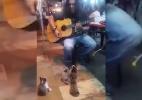 Artista de rua ganha plateia muito fofa na Malásia (Foto: YouTube/Reprodução)