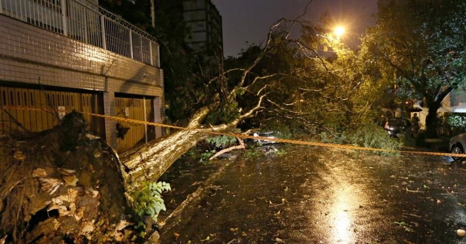 8.set.2015 - Chuva e fortes ventos derrubam árvore na rua Rodésia na Vila Madalena, na zona oeste de São Paulo
