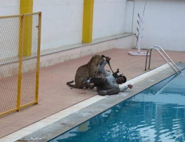 8.fev.2016 - Um leopardo macho entrou em uma escola em Bangalore, na Índia, e feriu as pessoas que tentavam capturá-lo. O felino acabou sendo anestesiado e recolhido