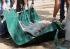 ONG retira últimos animais do zoológico de Gaza (Foto: Said Khatib/AFP)