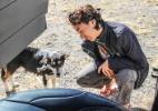 Sergio Medeiros e Eleni Alvejan/Projeto Mundo Cão